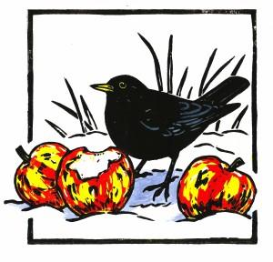 Red Apple,Black Bird